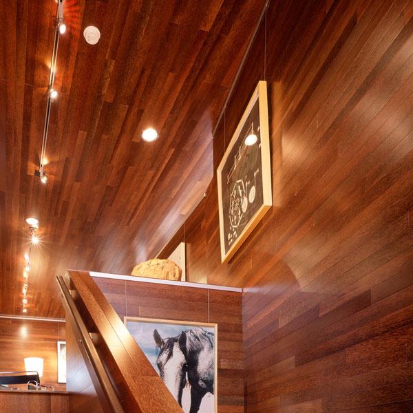 Plywood & Veneer